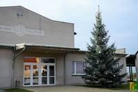 2017-11-26 Vánoční strom