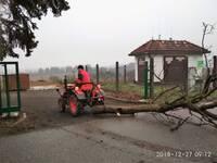 2018-12-27 Brigáda na revitalizaci stromořadí