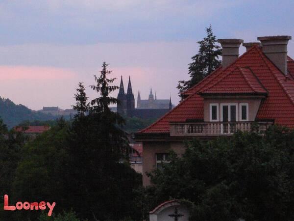 obrazek_hrady
