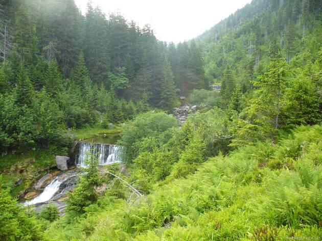 údolí Bílého Labe