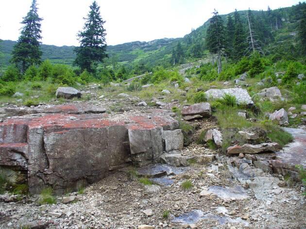 pozůstatky laviny z roku 1992