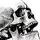 old-skull